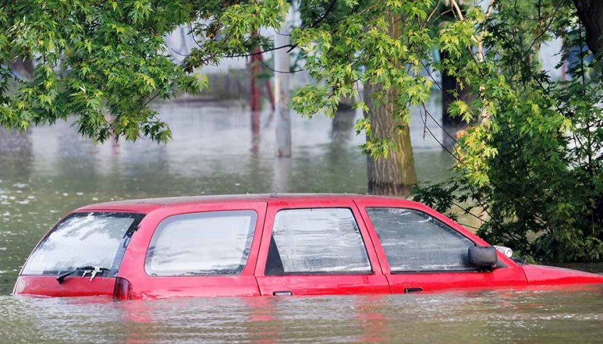 How Many Car Dealerships Had Flood